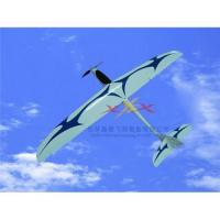 Quality SPEEDY rc plane for sale
