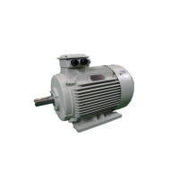 Quality 11KW 10 Pole 12 Pole Low Voltage 3 Phase Motor YE3 160M1-2 2950RPM for sale