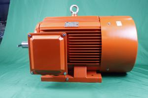 Quality YE3 100L1 6 Pole Class F 3 Phase Asychronous Motor 1.5kW IP55 for sale