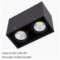 China Inside contemporary 30W COB LED down light for home shopping mall on sale