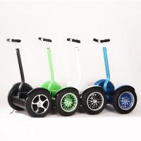 China Two Wheels Balance Electric Scooter Segway Type Mobility Scooters on sale