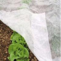 Quality anti-UV pp spunbond non woven fabric for seed cultivate for sale
