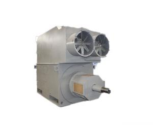 Quality 3550kW IP23 YRKK 7105-4 High Voltage Induction Motor H355 H1120 Frame for sale