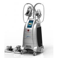 Quality ETG50-4S the best cryolipolysis machine Korea to Cellulite Recuction with two handles for sale