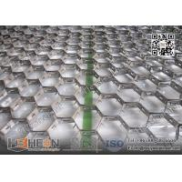 Quality Hex-Mesh Refractory Lining AISI309 19mm height X 1.5mmTHK   China Hex Metal Supplier for sale