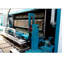China Automatic Waste Paper Pulp Molded Egg Tray Machine Egg Clamshell Molding Machinery on sale