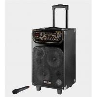 Quality Portable Microphone Rechargeable Trolley Speaker For Outdoor Party And Dancing for sale