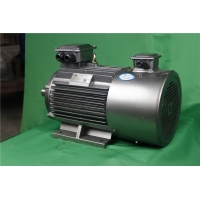 Quality YVFE3 315S-2 110 kW 380V 2P Variable Frequency Motor 2975RPM for sale