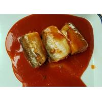 Quality Pacific Mackerel Fish Canned Food In Hot Chili Tomato Sauce ISO Certified for sale