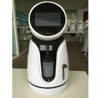 Quality White & Black Humanoid Smart Robot High Purify Oxygen Concentrator 1L Per Minute for sale