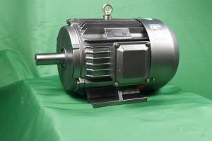 Quality YE3 80M2-6 Class F Asynchronous Electric Motor 0.55kW IP55 for sale