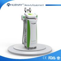 Quality most advanced multifuncitonal 5 handles Silicon handle body slimming fat freezing Cryolipolysis beauty equipment for sale