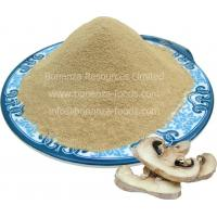 China Freeze Dried Button Mushroom Powder 2018 NEW NATURAL FOOD survival food camping food on sale