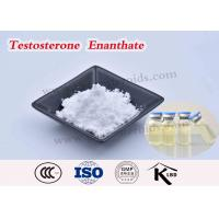 Quality Test Enanthate 250 Testosterone Enanthate Injectable Steroids USP Grape Seed Oil for sale