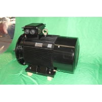Quality YE3 355M1 6 Pole Class F 3 Phase Asychronous Motor 160kW IP55 for sale