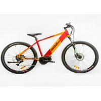 China Power Assist Mountain Bike , Specialised Electric Mountain Bike Brushless Controller on sale