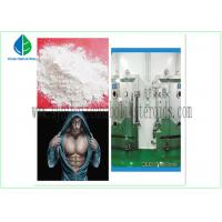 Quality Anti Estrogen Steroids Bodybuilding Testosterone Propionate Injection / Oral for sale