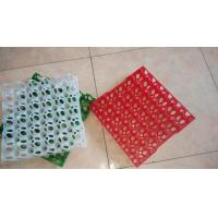 Quality Egg Cartons and Trays Cheap Plastic Egg Trays for sale