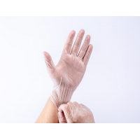 Quality OZONE Disinfection Non Sterile Gloves Powder Free Medical Disposable Vinyl for sale