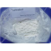 Buy Pro Turinabol Raw Testosterone Powder Aid in Maintaining Strength While Dieting at wholesale prices