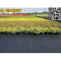 Quality green house / garden black weed control cover fabric for weed barrier mat for sale