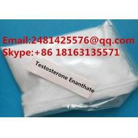 Quality Safe Anabolic Bulking Cycle Steroids Testosterone Enanthate Test Enanthate Powder CAS 315-37-7 for sale