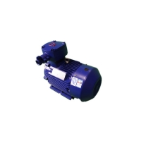 Quality 2970RPM YBX3 250M-2 Explosion Proof Electric Motor 55kW 94.3% Efficiency for sale