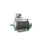 Quality YBX3 160M1-2 Squirrel Cage Asynchronous Explosion Proof Motors 2940RPM 11kW for sale