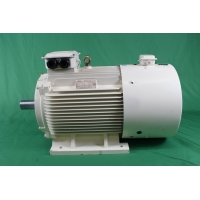 Quality YVFE3 280S-2 75kW IP55 380 Volt Variable Frequency Motor 2980RPM for sale