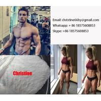 Quality 15262-86-9 Testosterone Steroid Hormone Testosterone Isocaproate For Muscle Building for sale