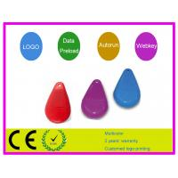 Quality Red plastic stone shape  64MB, 128MB Customized USB Flash Drive AT-136 for  Notebook for sale