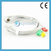 Quality Colin BP88/BP306 ECG cable with leadwires for sale