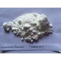 Quality White Testosterone Steroids Testosterone Enanthate 250 CAS 315-37-7 for sale
