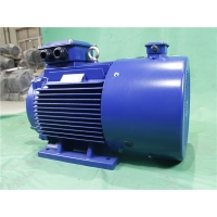 Quality YVFE3 315M-2 132kW 380V IP55 LV Variable Frequency Motor 2975RPM for sale