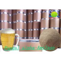 Quality Beer Brewery Fungal Food Grade Alpha Amylase Enzyme SINOzym-FAA50BE for sale