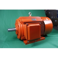 Quality YE3 315S 6 Pole Class F Induction AC Asynchronous Motor 75kW IP55 for sale