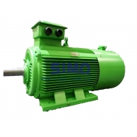 Quality IP54 HV Three Phase Asynchronous Motor Y2 3551-2 185kW 6kV for sale