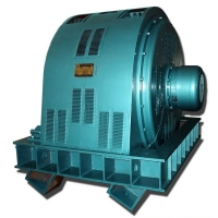 Quality TK Series Three Phase Synchronous Motor 4000kW IM 5710 for sale