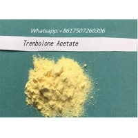 Quality Anabolic Steroid Trenbolone Acetate Powder Without Ester Muscle Growth for sale