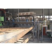 Quality Rotary Type Paper Egg Tray Production Line Big Capacity 1500-5000pcs/h for sale