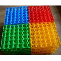 Quality Custom plastic egg tray product for wholesale market for sale