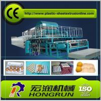 China Pulp Molding Paper Egg Tray Machinery , CE Paper Egg Tray Machine on sale