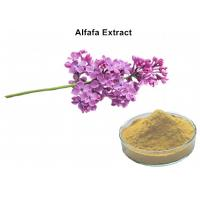 Quality Alfafa Plant Extract Powder 5% Flavonoids UV Lowering Blood Fat Chloresterol And Diuretic for sale