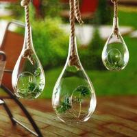 China Tear Drop Craft Glass Flower Planters / Borosilicate Garden Glass Hanging Planters on sale