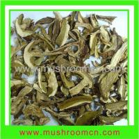 Quality Hot sale white king bolete for sale