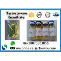 China Testosterone Enanthate / Test E Injectable Muscle Building Steroid White Crystalline Powder on sale