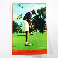 Quality Digital Vinyl Large Banner PrintingWith Cartoon Sticker Printing for sale
