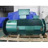 Quality YVFE3 200L2-2 37kW 380V 3 Phase Asynchronous Motor LV 2975RPM for sale