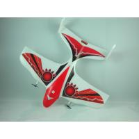 Quality Mini 2CH Electric EPP RC Airplanes Model Red Yard Flyer - DSCN1898 With Transmitter for sale