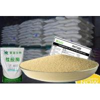 Quality 10000u/g Yellowish Phytase Animal Feed Coated Granule Form Szym-PHY10C for sale